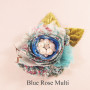 BLUE ROSE MULTI